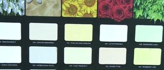 Sprawdź wpływ kolorów ścian na Twój organizm