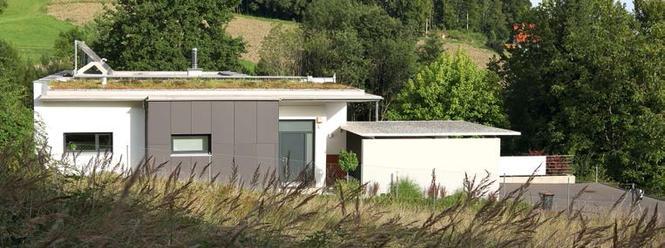 Dach z roślinnością ekstensywną