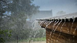 Gdzie odprowadzać deszczówkę? Sposoby na wykorzystanie i odprowadzenie wody deszczowej