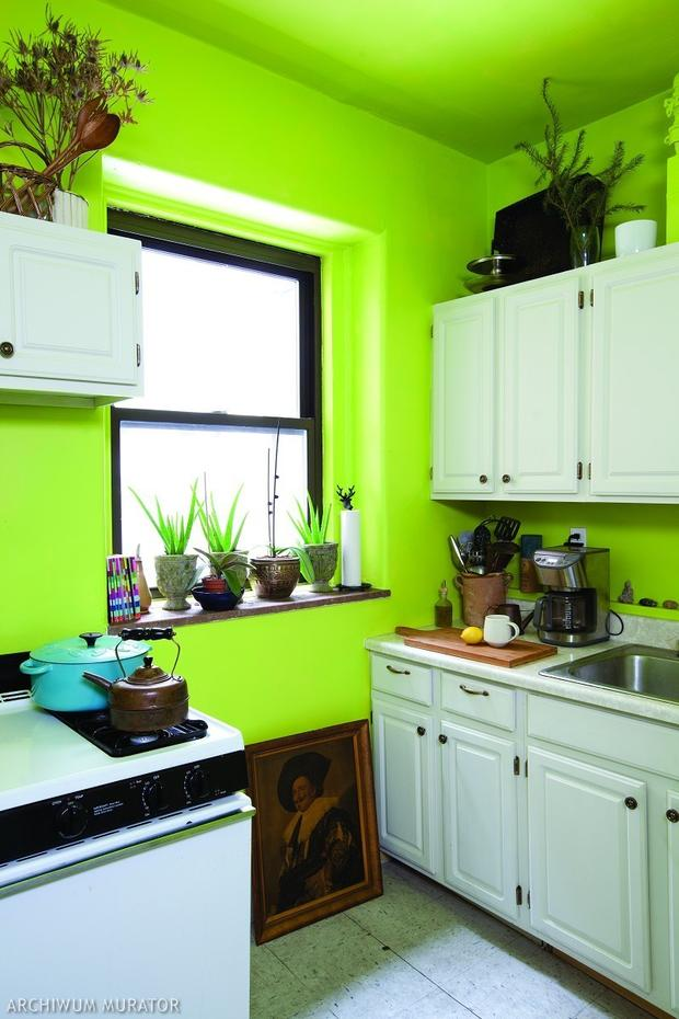 8 pomysłów na zieloną kuchnię Zobacz zdjęcia kuchni   -> Kuchnia Ikea Zielona
